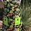 Thumbnail: Kids Size Dinosaurs Full Apron