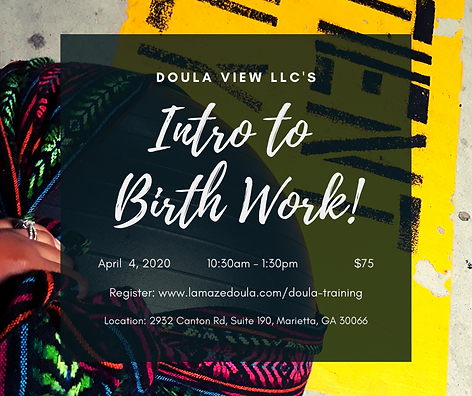 Doula view llc's.png