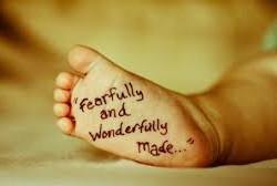 Fearfully & Wonderfully made...