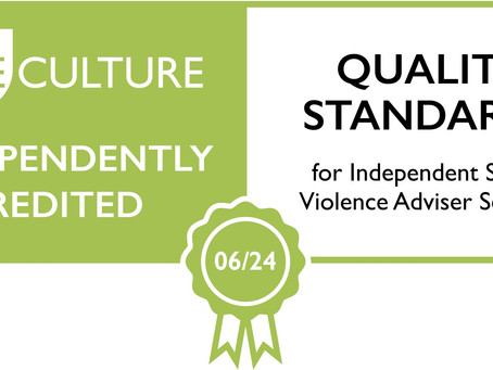 Quality Standards for Independent Sexual Violence Adviser Services Success