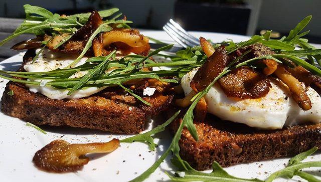 Oyster Mushrooms served crispy with eggs on toast