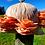 Thumbnail: Grow Your Own Oyster Mushrooms - Easy 5 Step DIY Mushroom Grow  Kit