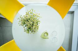 עיצוב שולחן ישיבות קטן-סיגל סיוון ידוב