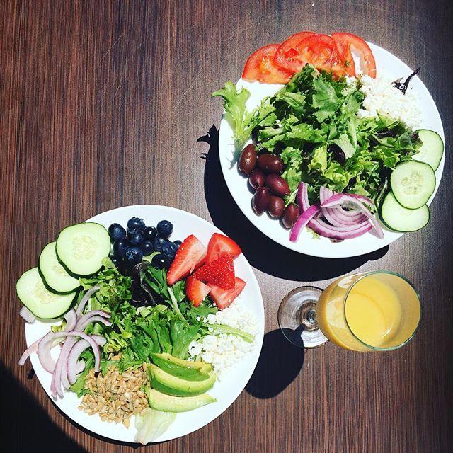 mimosa, salad, fresh, fit