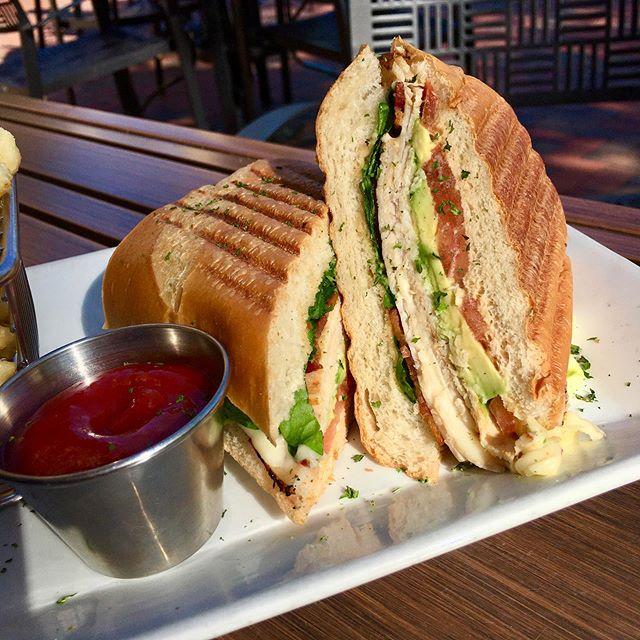 avocado, california, panini