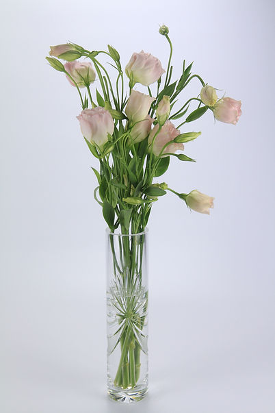 Monet Roses, Monet lillies, Tabletop Alchemist