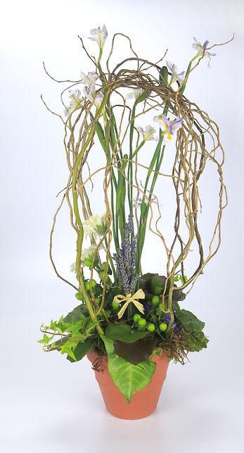 Kinkade inspired iris, iris, Tabletop Alchemist