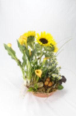 van Gogh, van gogh sunflowers, Tabletop Alchemist
