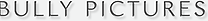Bully Logo.png