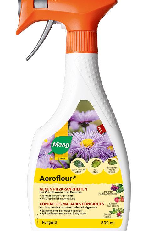 Maag Aerofleur Spray gegen Pilzkrankheiten 500 ml