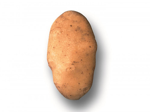 Saatkartoffeln 'Victoria' (verbesserte 'Bintje') 2.5 kg