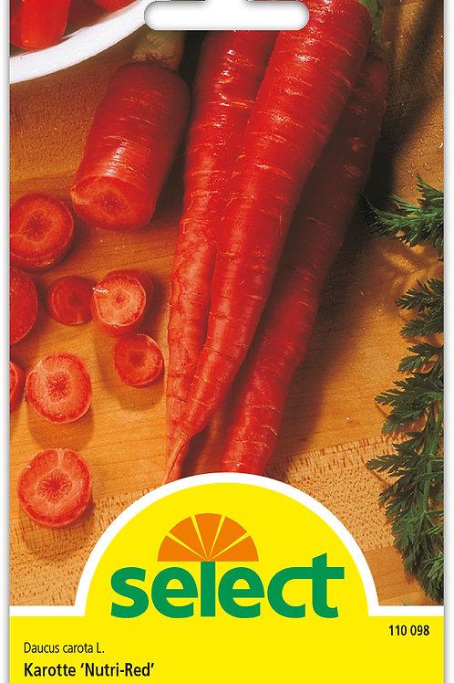Karotte 'Nutri-Red' - Daucus carota