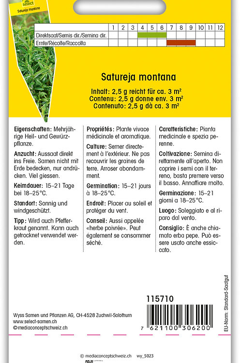 Bohnenkraut - Satureja montana
