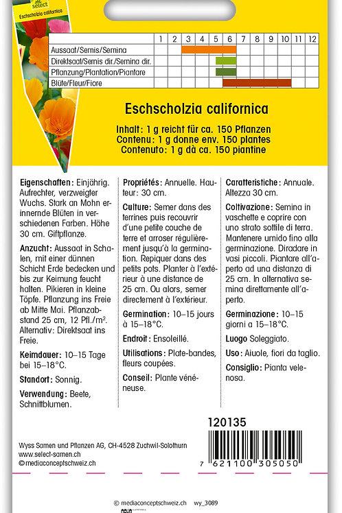 Kalifornischer Mohn - Eschscholzia californica