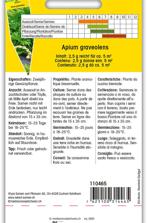 Schnittsellerie - Apium graveolens
