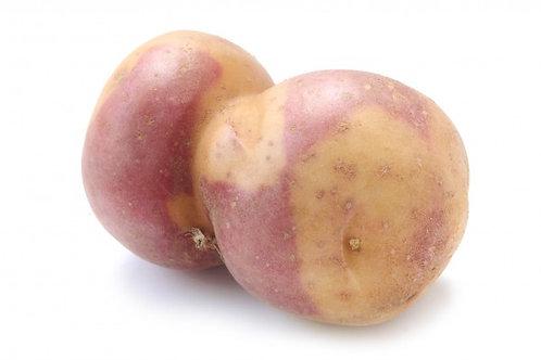 Saatkartoffeln 'Miss Blush', 1 kg