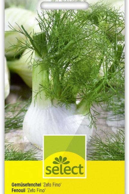 Gemüsefenchel 'Zefa Fino'