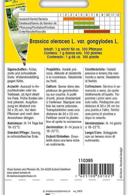 Kohlrabi 'Lanro' - Brassica oleracea L. var. gongylodes L.