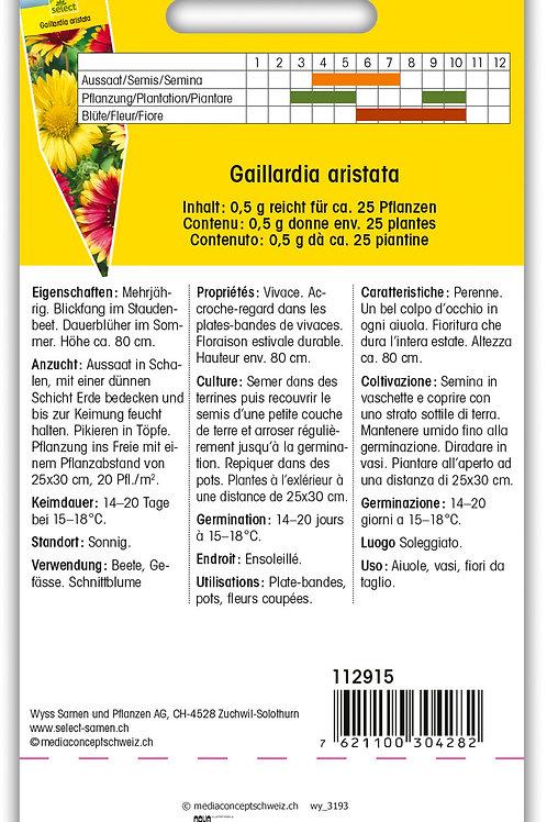 Korkadenblume - Gaillardia aristata