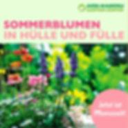 Sommer%20Blumen_edited.jpg