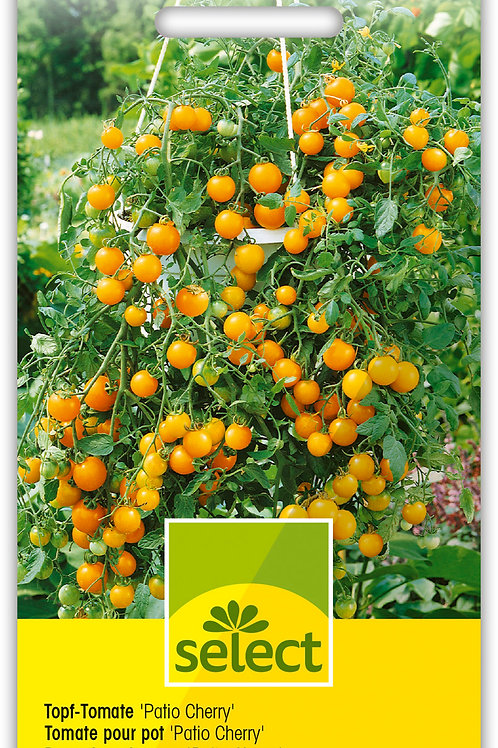 Topf-Tomate 'Patio Cherry' - Lycopersicon esculentum