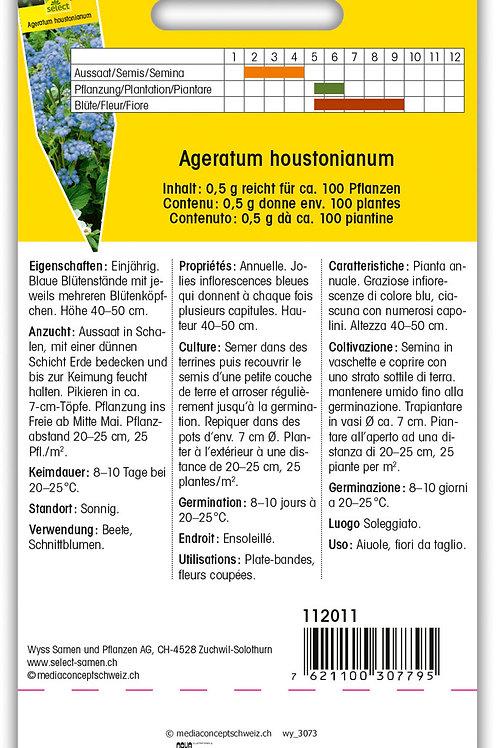 Leberbalsam 'Schnittwunder' - Ageratum houstonianum