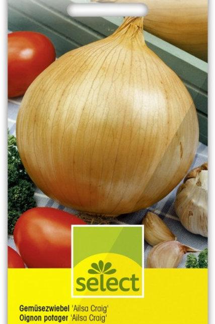 Gemüsezwiebel 'Ailsa Craig'