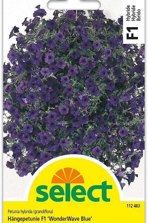 Hängepetunie F1 'WunderWave Blue' - Petunia hybrida (grandiflora)