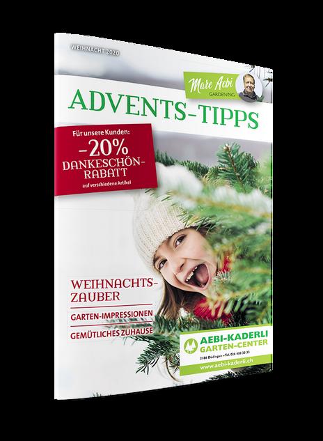 Advents-Tipps_DE_2020