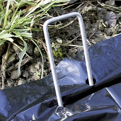 Metallheringe, verzinkt