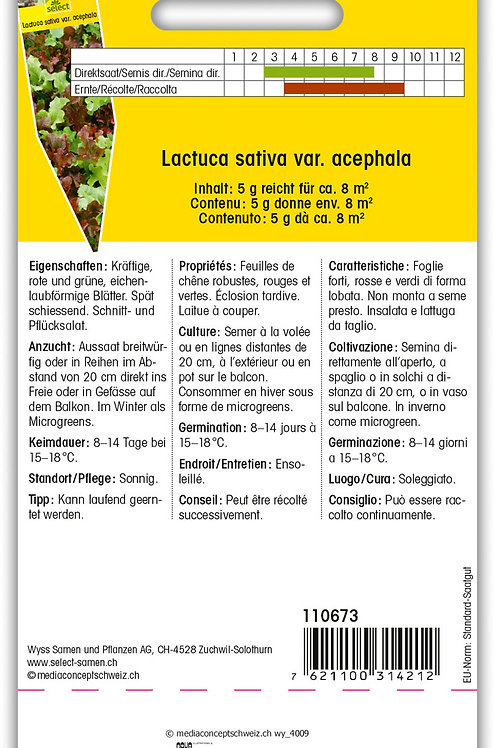 Pflücksalat 'Confetti' - Lactuca sativa var. acephala