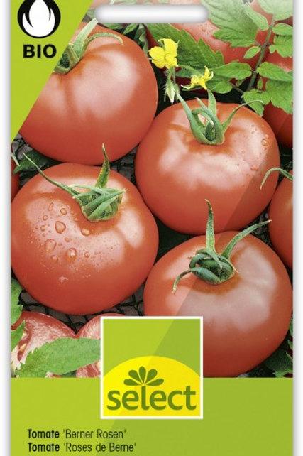 Bio VK Tomate 'Berner Rosen'