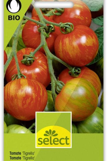 Bio VK Tomate 'Tigrella'