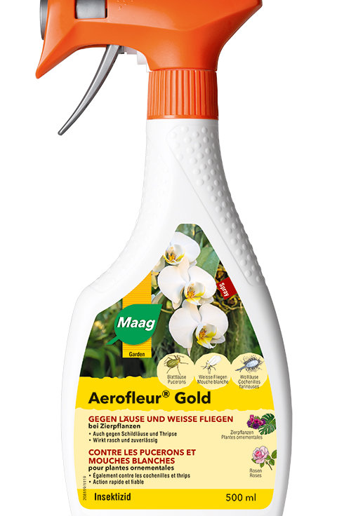 Maag Aerofleur Gold Spray 500 ml