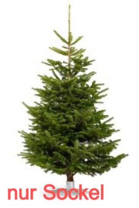 Sockel Miete zu Weihnachtsbaum/ Location socle