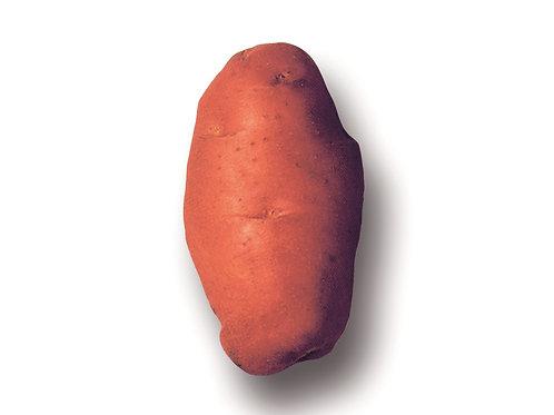 Saatkartoffeln 'Désirée' BIO, 1 kg