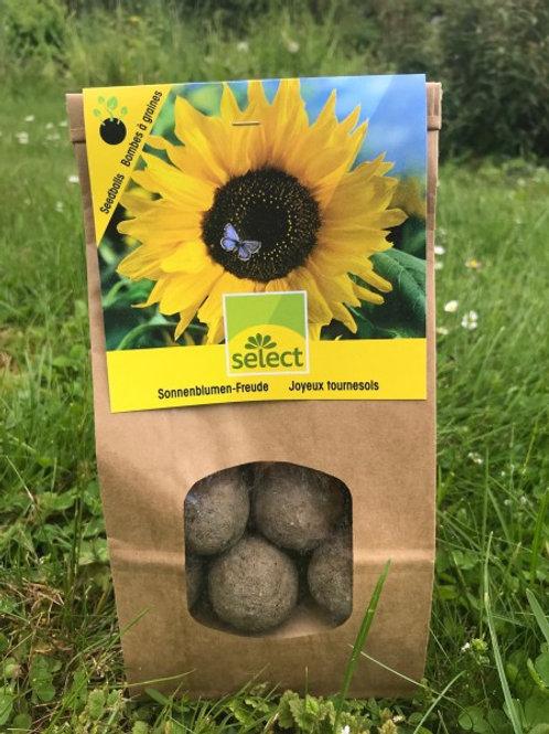 Seedballs-Sonnenblumen
