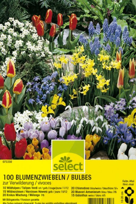 Gartenkollektion in Tragtasche