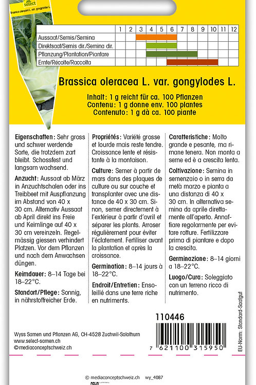 Kohlrabi 'Superschmelz' - Brassica oleracea L. var. gongylodes L.