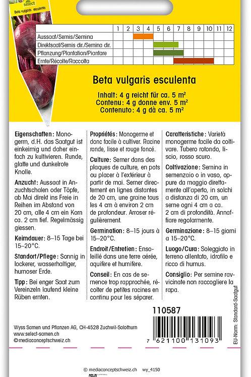 Rande, Rote Rübe 'Moneta' - Beta vulgaris  esculenta