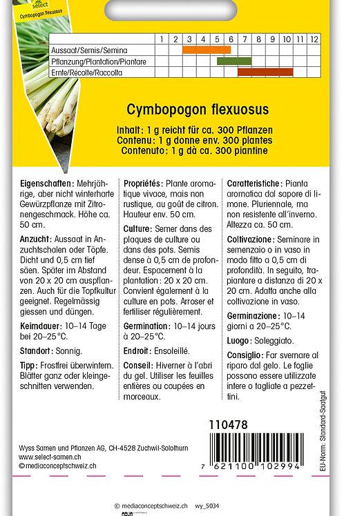 Zitronengras - Cymbopogon flexuosus