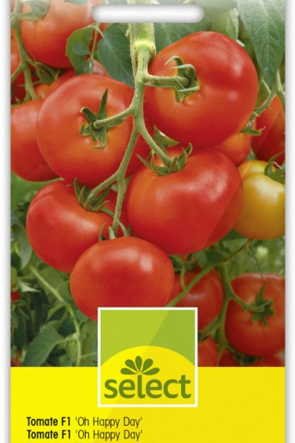 Tomate F1 'Oh Happy Day'