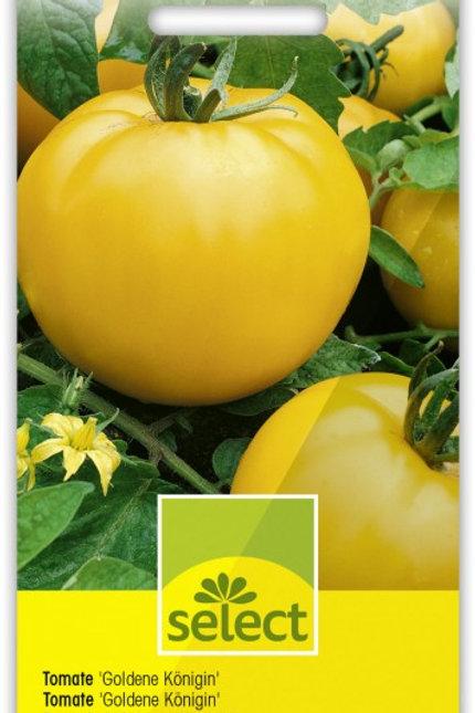 Tomate 'Goldene Königin'