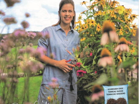 Ricoter Garten und Blumen Erde