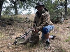 Lonnie Hohmann Whitetail Deer.jpg
