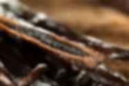 raw-organic-vanilla-beans-P8PJPWE.jpg