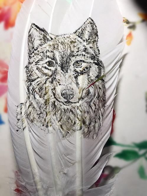 Plumes peintes - Trio - Tête de Loup