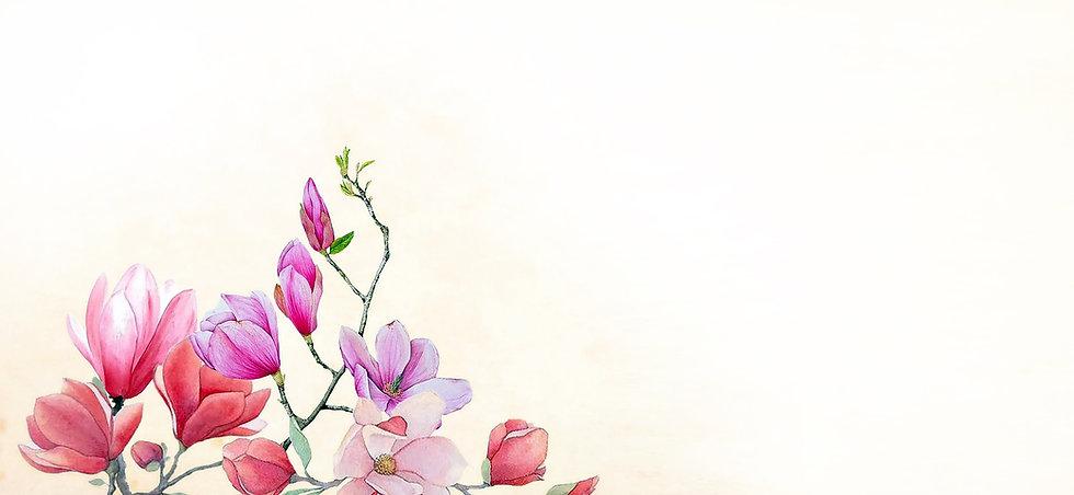 fleurs_thérapeute2.jpg