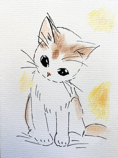 Carte - Chat