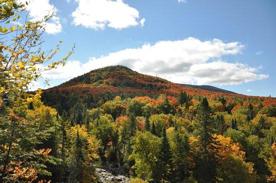 Montagne automne.png